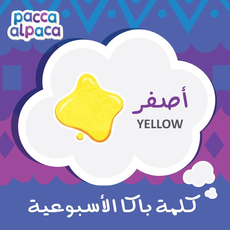 This week Pacca learns how to say yellow in Arabic!