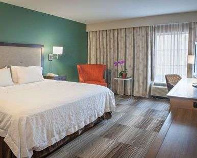 Hampton Inn & Suites New Orleans-Convention Center Hotel, LA - Accessible King Bedroom