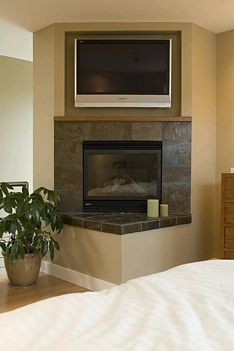 41 best fireplace options images on pinterest corner for Fireplace options