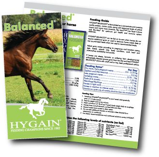Hygain Balanced - Mineral and vitamin balanced horse feed pellet