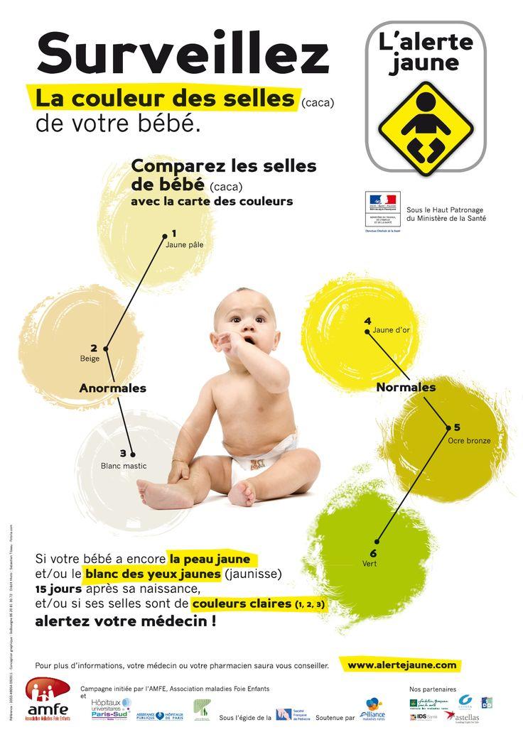 Caca jaune, caca vert, caca noir,...nous avons le nez dans les couches de bébé mais sans savoir réellement de quelle couleur doivent être les selles de bébé.Continuer la lecture