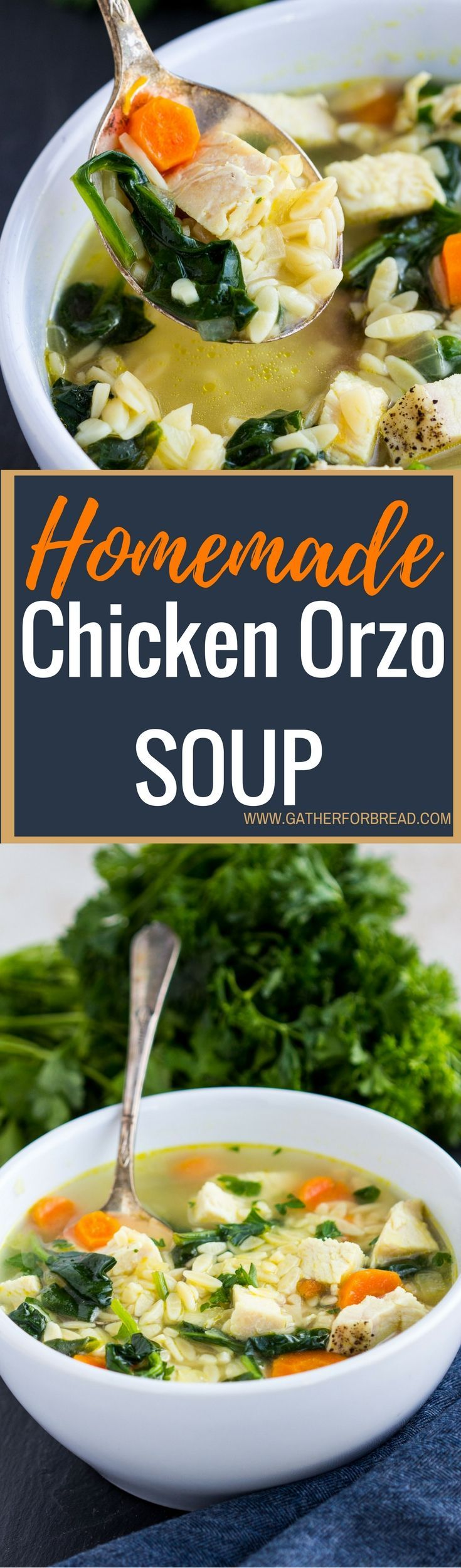Zo S Kitchen Chicken Orzo best 25+ cooking orzo ideas on pinterest | gluten free orzo