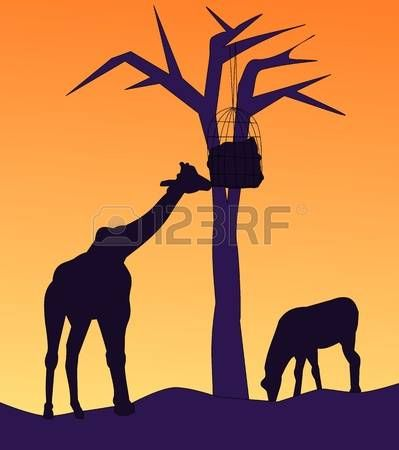 Giraf silhouette: A giraffe is eating food hanging from a tree, and a horse is grassing nearby. Stock Photo