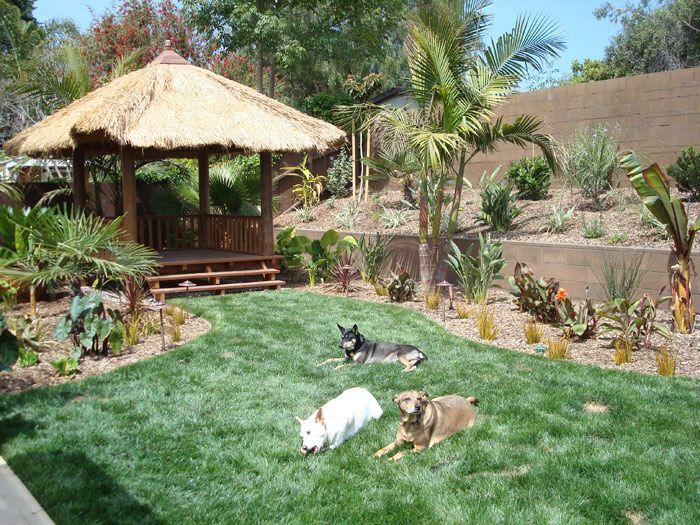 Garden Design For Dogs 42 best dog yard images on pinterest | dog yard, backyard ideas
