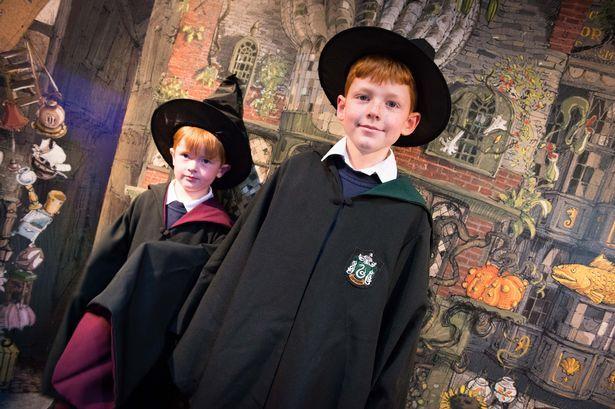 Чердак в стиле Гарри Поттера: Выставка новых иллюстраций к книгам о ГП  Источник: http://hpclub.ru/7687/