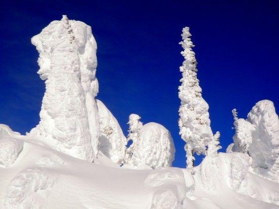 Snow ghosts at Big White Ski Resort.
