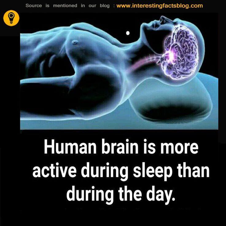 Do You Know Brain More Active When Asleep Than Awake..?
