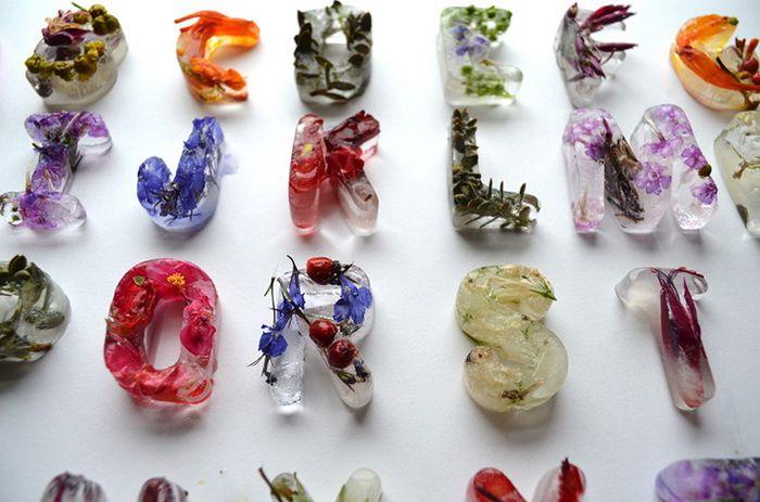 Цветочные кубики льда: оригинальный алфавит от Петры Благовой (Petra Blahova)
