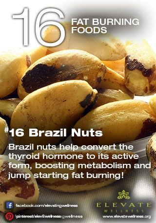 #16 Brazil Nuts  Brazil nuts help convert the thyroid hormone to its active form, boosting metabolism and jump starting fat burning!