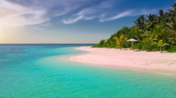 #blauw #eiland #fotos #gezond #gratis #palmboom #paradijs #strand #tropisch #wit #zand