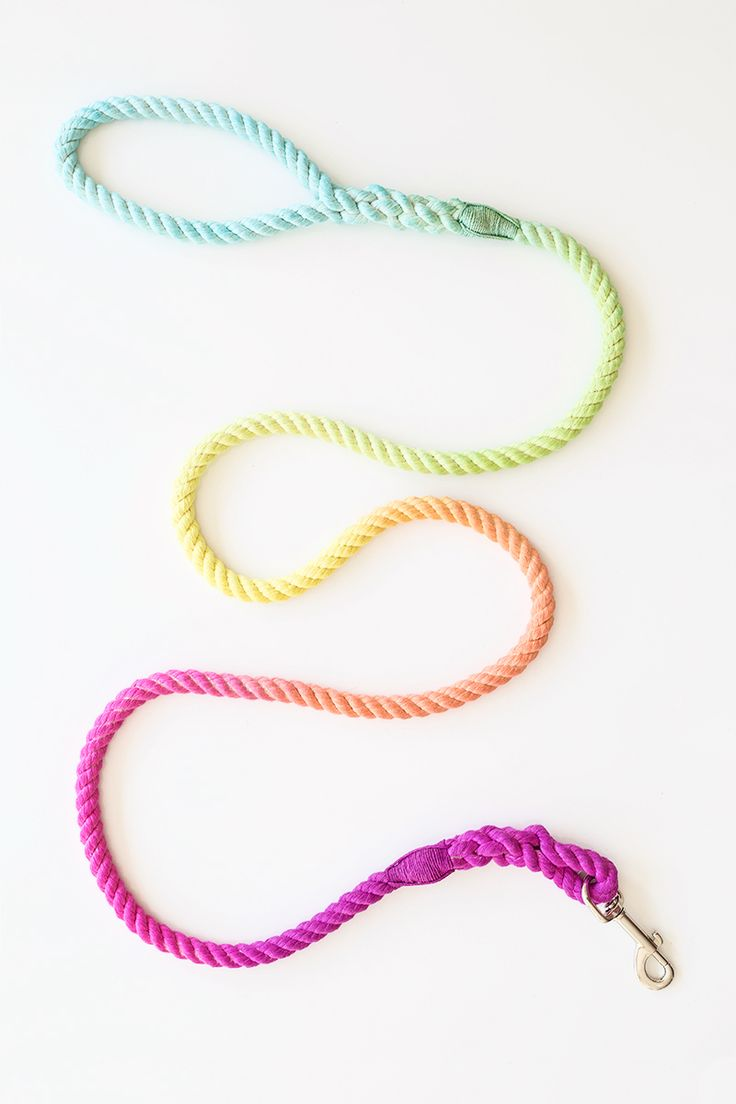 DIY Technicolor Dog Leash | studiodiy.com