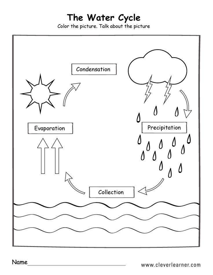 Water Cycle Poster Science Cycle Poster Science Water Water Cycle Worksheet Water Cycle For Kids Cycle For Kids