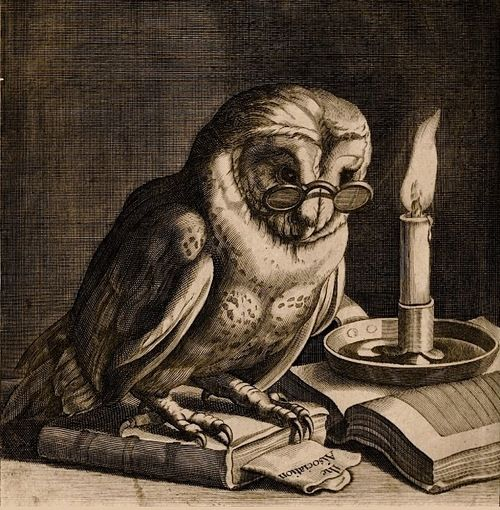 James Collins, after Cornelis Bloemaert (1625); Owl wearing reading spectacles by candlelight (woodcut), England, circa 1685. (gracias @patriciadamiano)
