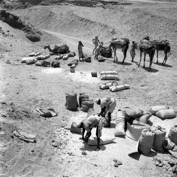 أعمال تعبئة الملح بجبل الملح بجيزان قديما Natural Landmarks Landmarks Mount Rushmore