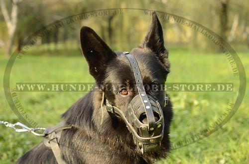 Hunde Maulkorb exklusiv