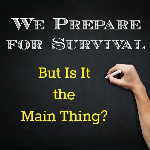 As your prepare for survival, have you considered measurable standards not tied to government or big business? A new think piece from Richard Earl Broome.