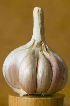 Garlic more effective in treating food poisoning than antibiotics!