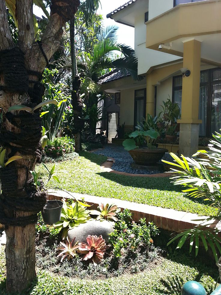 A R florist. Landscape garden, vertical garden, design..