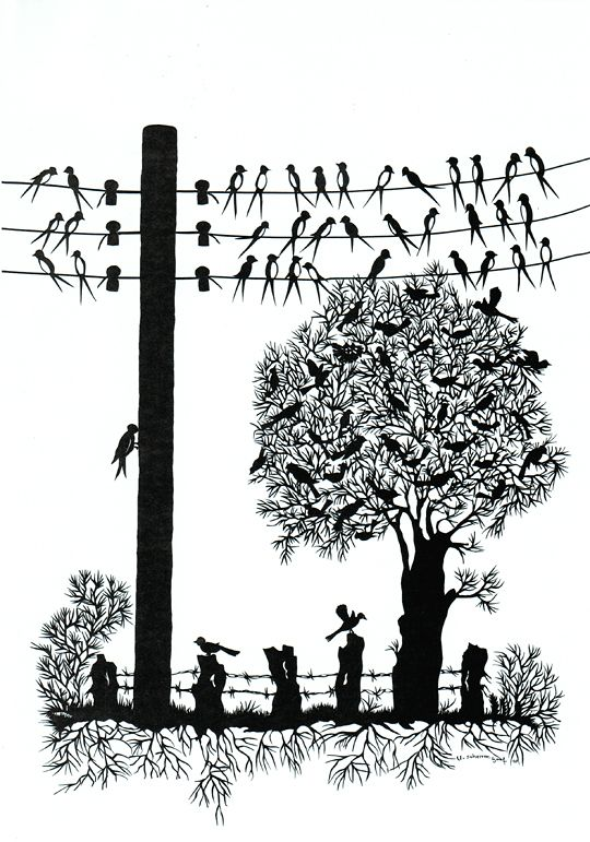 Vögel auf dem Drahtseil