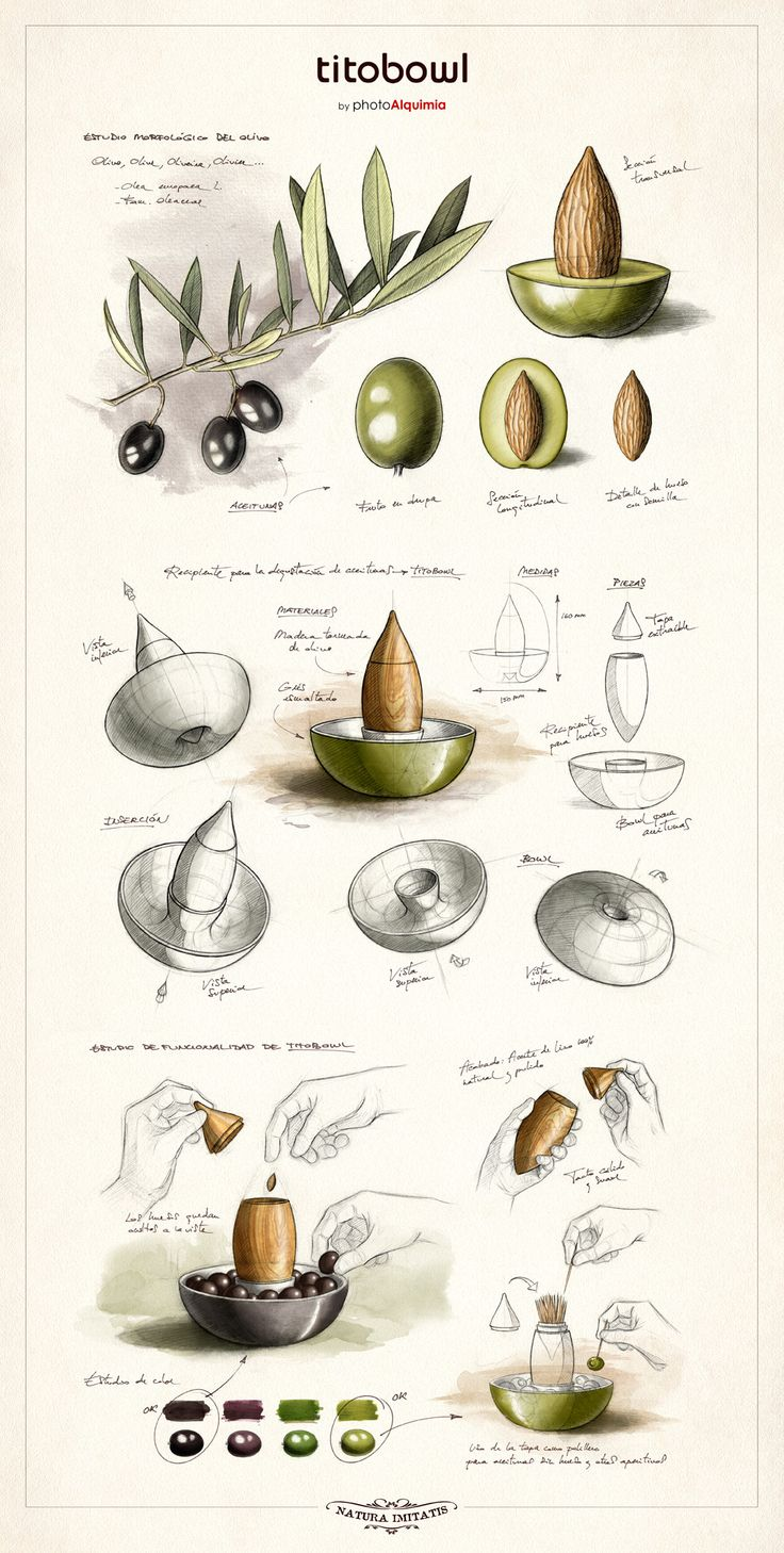 Sketches for TITOBOWL on Behance