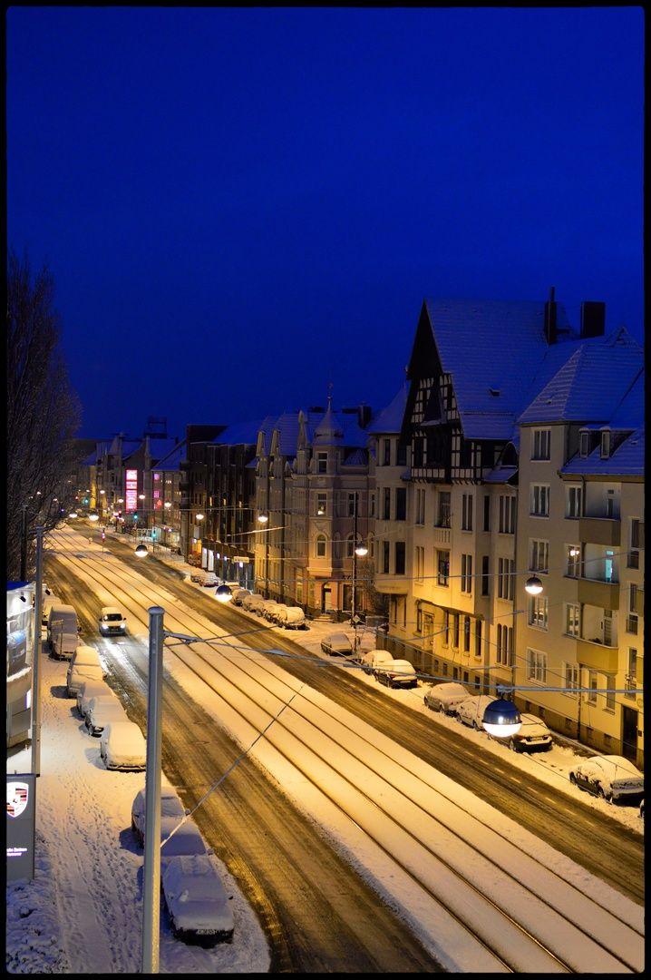 HANNOVER List  Podbi im Schnee Hanover Germany