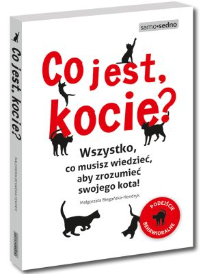 Pierwsza pomoc w kociej sprawie - kocibehawioryzm.pl