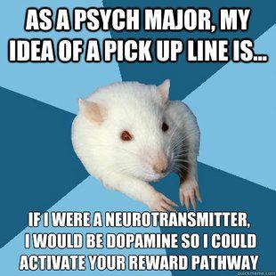 Dopamine.Psychology Major Rat, Colleges, Life, Psych Major, Psychologymajor, Funny, Major Rats, Psychology Humor, Psychology Stuff