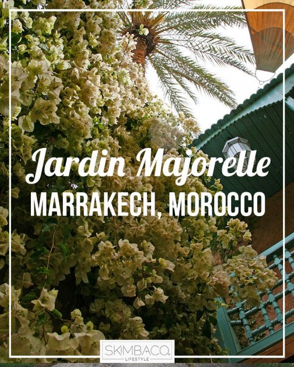 Jardin Majorelle gardens in Marrakech, Morocco - where Yves Saint Laurent got his inspiration and final resting place.