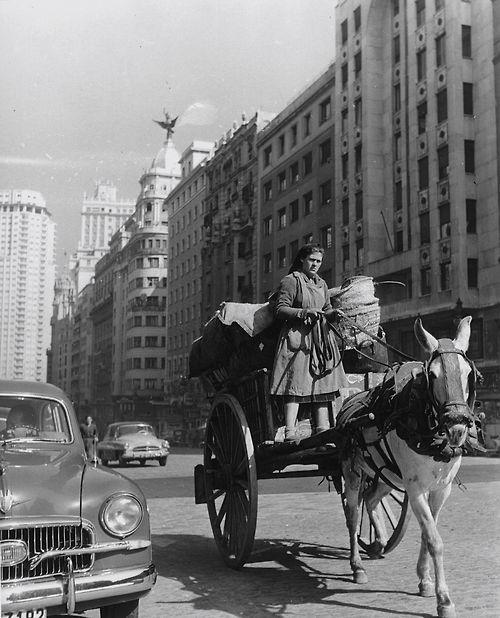 F Català-Roca. Madrid 1955