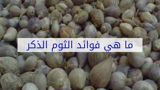 فوائد الثوم الذكر اليمني Garlic Vegetables Beans