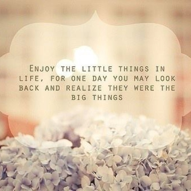 It s the little things quotes amp sayings pinterest