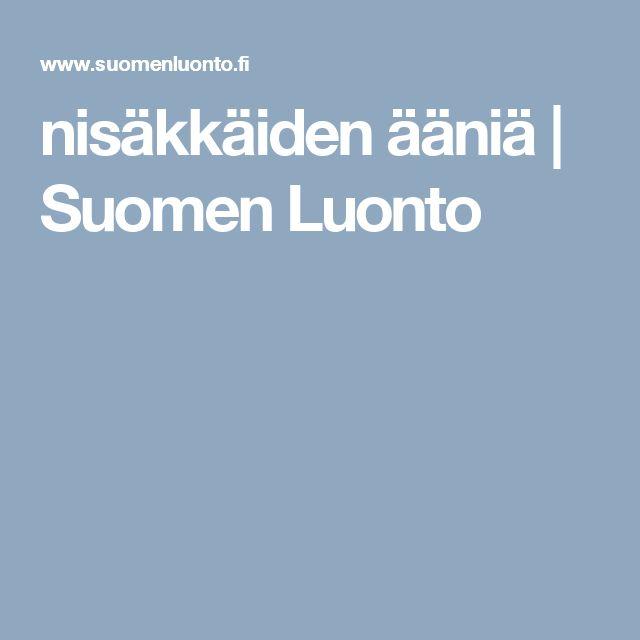 nisäkkäiden ääniä | Suomen Luonto