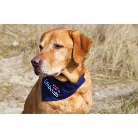 Bandana On Dog Collar