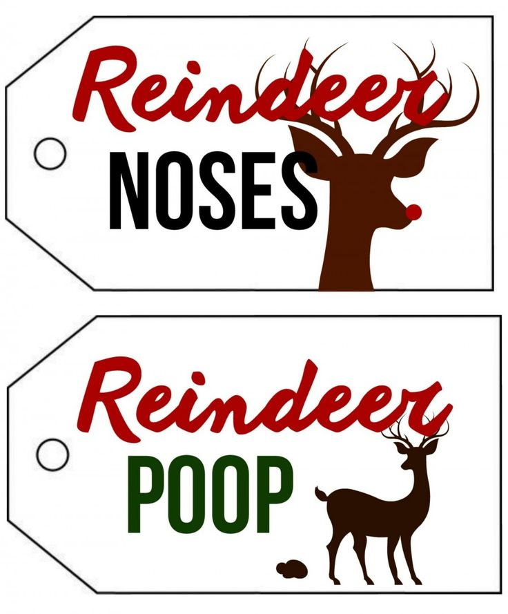 reindeer noses….and poop. cause i'm young at heart. printables!