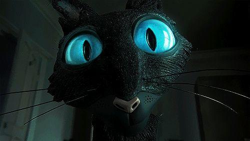 O gato semicerra os olhos para Coraline.
