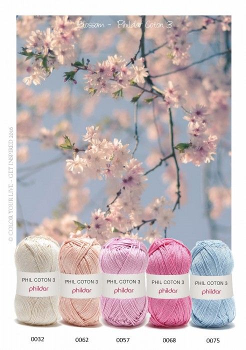 Phildar kleurinspiratie pakket Blossom