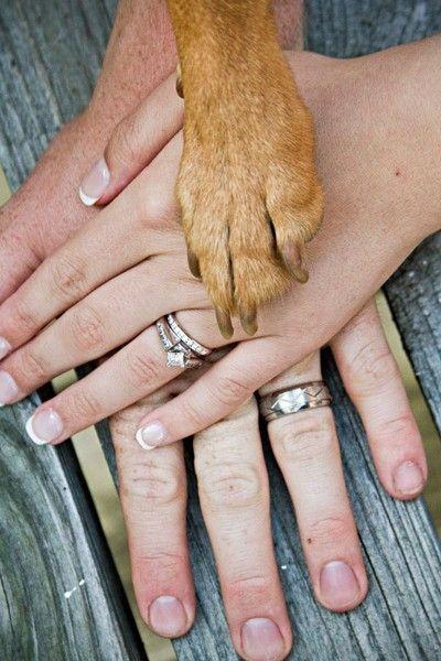 Sabe quem merece um cantinho especial em seu álbum de fotografia? Seu pet! Olha que linda esta foto, com participação especial do cachorro dos noivos <3 Mais ideias para fotos de casamento aqui!
