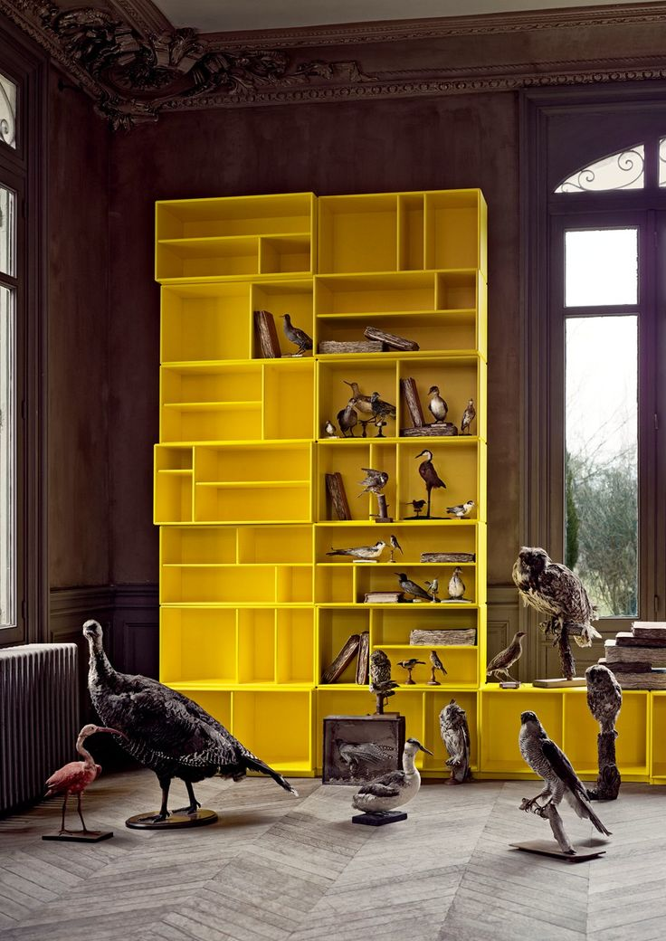 Easter is around the corner – why not let birds nest in your Tokyo Yellow bookcase. #yellow #easter #birds #bookcase #montana #shelving #furniture