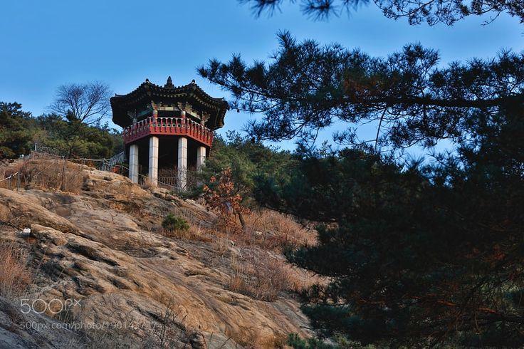 Popular on 500px : 팔각정 (Octagonal Pavilion) by visbimmer