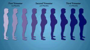 Pregnancy Exercises - Best Workouts When You're Pregnant - Parents.com