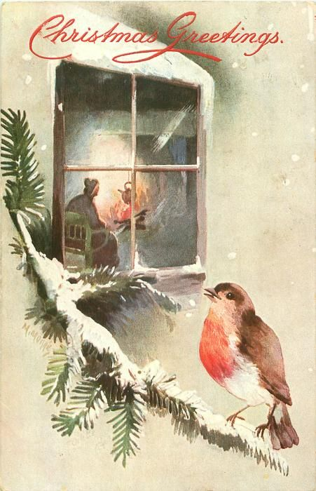inset robin on snowy evergreen looking in at lady sitting ...