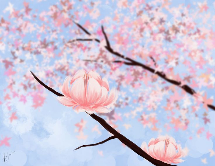 17 Best images about Cherry Blossoms on Pinterest Cherries, Don\u0027t - cherry blossom animated