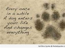 qoutes about dogs - Bing Images                                                                                                                                                     More