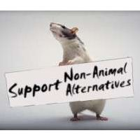 animal research the role of animals in the safety of cosmetics All proposals of using animals for research should be approved by the institutional animal care and use committee (iacuc) that was set up by research facilities list of cons of animal testing on cosmetics.