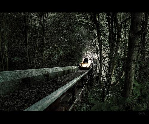 1051 Best Images About Abandoned/Destroyed Amusement Parks On Pinterest