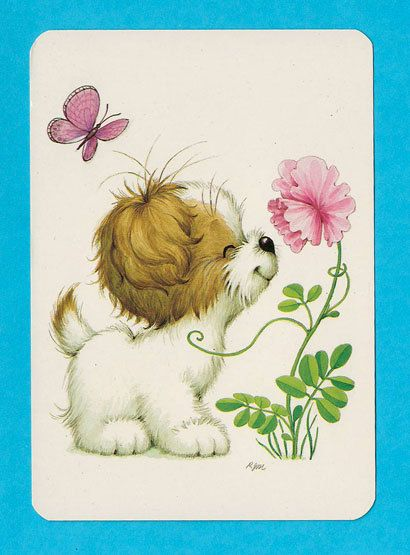 Vintage post card 70s. Sweet puppy smelling a flower.