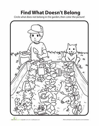 95 best Kindergarten Garden I'm in charge oh'boy images on