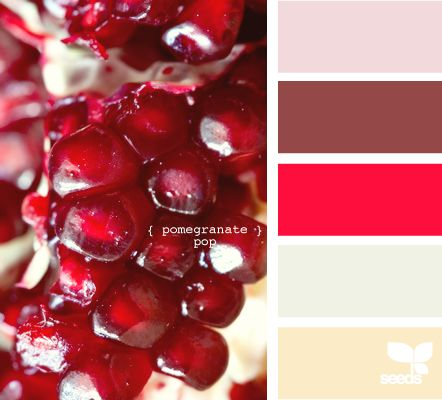 pomegranate pop: Color Palettes, Design Seeds, Cdp Colors, Captured Colors, Palette, Cccc Color Inspirations, Accent Colors, Colors Inspiration