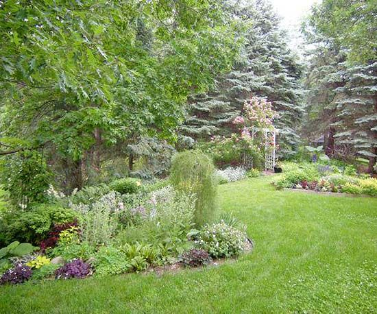 Design lessons from a minnesota shade garden for Shade garden designs
