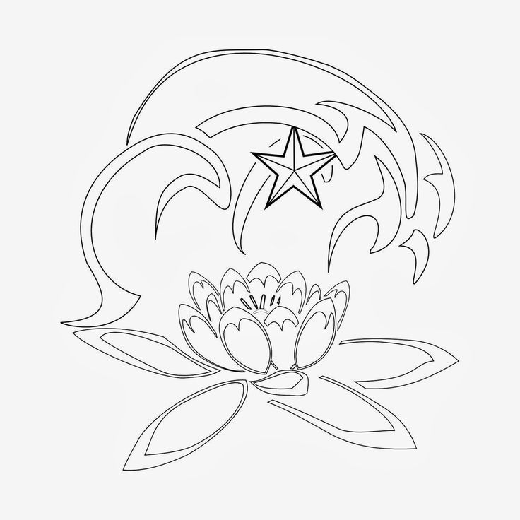 Water Lily Stencil Black And White: 55 Best Lily Tattoos Images On Pinterest